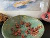 Afbeeldingen van Grote paddenstoelen schaal